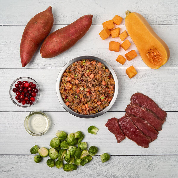 Venison & Squash - Just Food For Dogs
