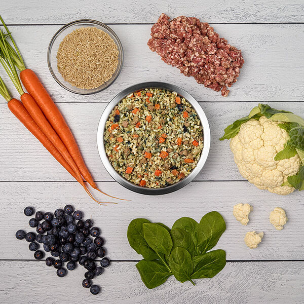 Renal Support Moderate Protein - Just Food For Dogs