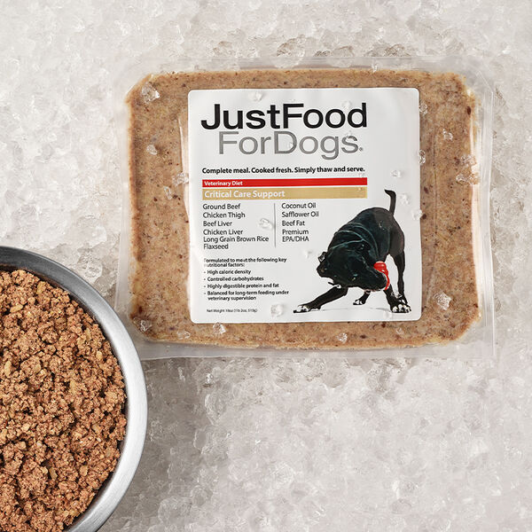 Critical Care Support - Just Food For Dogs